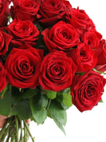 Ruusuja Rakkaalle